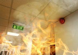 Fire retardant paint