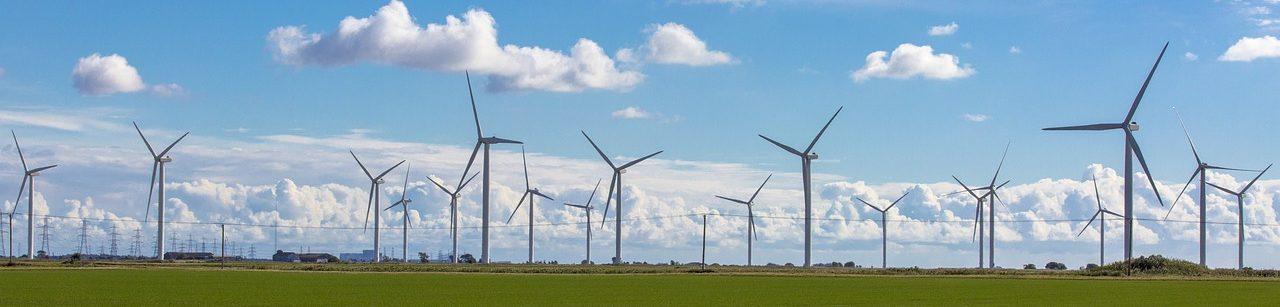 Wind farm with wind turbine coating