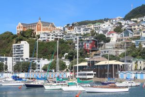 marine coating protecting boats in wellington harbour area
